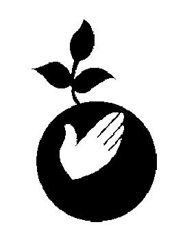 Ekološke Boje